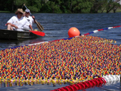 rubber_duck_race_web
